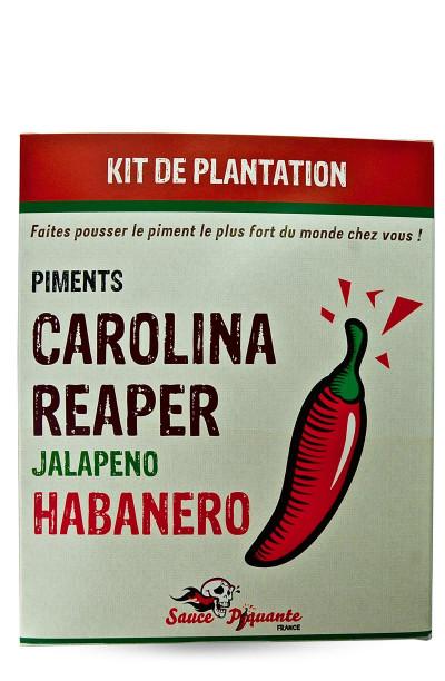 kit plantation piment